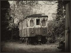 tren de lachar (izquierdolemus) Tags: flower train tren diego perro sofa granada sillon viejo avion abandono despegue lemus navegacion izlemus izquiedo