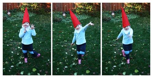 Tap Gnome