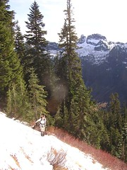 Dicey side-hilling towards meadows on Stillaguamish trail