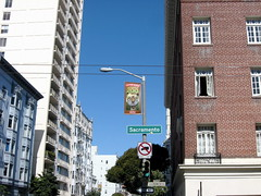 tiger giraffe head at the zoo? (d-day) Tags: sanfrancisco honeymoon signage anomalies