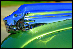 Hoody - 0042 (fatboyO) Tags: old cruise portrait usa color colour detail reflection classic cars ford chevrolet colors car sport metal composition self vintage design buick 60s automobile shiny colours body unique curves wheels surreal ornament chevy bumper fender chrome american 70s hotrod vehicle dodge hood motor pontiac 50s chrysler autos custom rim rims hoodornament carshow 30s taillight vintagecars oldsmobile 40s bodywork americanclassic antque olehkobyleckyj