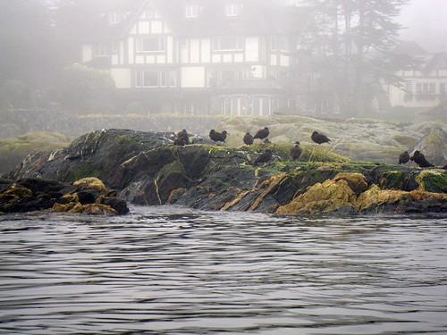 2008-11-30 The Fog 042