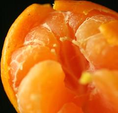 Orange Macro 2 (Debbie G) Tags: food orange macro fruit pfogold pfoisland04