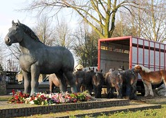DSC_9828 2 Statue Dutch Drafthorse (Ton van der Weerden) Tags: horses horse de cheval van 2008 der nederlands belges ton draft chevaux belgisch trait gerwen trekpaard trekpaarden weerden wwwtonvanderweerdennl veulenkeuring