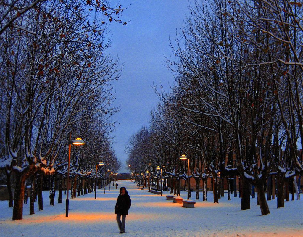 Paseo de nieve