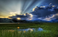 A soft summer night in the marsh (Stuck in Customs) Tags: sunset wild summer wallpaper sky panorama cloud sun green texture nature water colors beautiful clouds reflections painting landscape photography evening amazing cool nikon perfect montana exposure shoot mood alone peace photographer shot natural image details d2x perspective scenic picture surreal peaceful atmosphere zen stunning pro yellowstone marsh rays wyoming top100 portfolio lovely capture sunrays grassland 2008 emotions tones magical sunbeam beams hdr masterpiece wetland rayes d2xs stuckincustoms treyratcliff