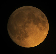 The Moon on August 4th (John Petrick) Tags: moon luna fullmoon moonshot telephotolens moonshine withnothingelsetodo standingonthemoon mooncraters lasvegasmoon dsch50 moonoverlasvegas moononaugust4th2009 fullmoonoverlasvegas 08042009moon butidratherbewithyou alovelyviewofheaven