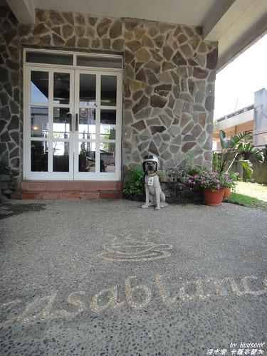 門口有一隻戴安全帽的狗