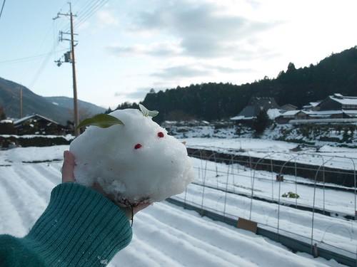 雪の大原 (68)
