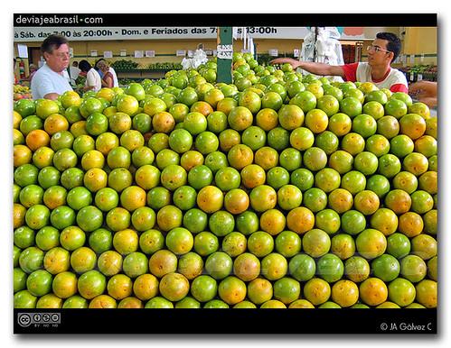 naranjas / oranges
