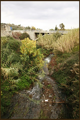 Evrychou river /   (-Filippos-) Tags: bridge green water rural river countryside cyprus    92007    evrychou karkotis