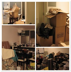 post-apocalyptic wasteland (aka my apartment)