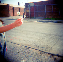 NO EXIT (elise largesse (ghostsafe)) Tags: street new york city brick girl brooklyn fence holga spring whimsy purple pavement dandelion greenpoint