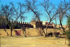 Morocco 1997 (peace-on-earth.org) Tags: africa morocco maroc taroudaant peaceonearthorg