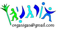 לוגו חמדמוד