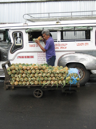Tabaco Legazpi City fruit vendor peddler unloading pineapples from jeepney to his cariton Pinoy Filipino Pilipino Buhay  people pictures photos life Philippinen  菲律宾  菲律賓  필리핀(공화국) Philippines pinya piña