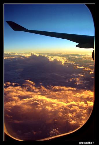 I need a cheap flight to Brazil!!!!