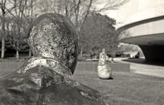 Detail: The Last Conversation Piece (januaryman) Tags: sculpture statue washingtondc dc washington xp2 hirshhorn canonet ilford weebles munoz hirshhornmuseum lastconversationpiece fromtheback byjuanmuoz