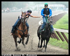 The Runaway (Rock and Racehorses) Tags: morning horses horse ny newyork girl rain ride exercise mud saratoga explore pony gallopinghorse catch reach thespa runaway grab rider bit thoroughbred sloppy slop runawayhorse ponygirl ponyrider exerciserider theunforgettablepictures damniwishidtakenthat
