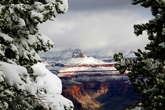 South Rim Grand Canyon (MickiP65) Tags: travel winter vacation arizona sky usa snow tree tourism nature beautiful clouds landscape outside outdoors getaway grandcanyon az creation mostinteresting northamerica february 2008 southrim copyrighted canoneos30d michellepearson mickip mickip65 promaster18200