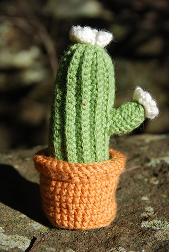 Crochet Cactus revisited + free pattern
