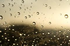 Raindrop Window (wanderingnome) Tags: ca sunset usa beach rain unitedstates august raindrops ventura rincon canondigitalrebelxt ©wanderingnomez ef50mmf25compactmacrolens