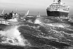 Chasing the Queen in Black and White (gcquinn) Tags: ocean voyage cruise 2 san francisco geoff mary queen quinn geoffrey qm2 maiden chasing cunnard platinumphoto theunforgettablepictures theunforgettablepicture rmg:aav=0 rmg:aaw=0 rmg:aal=0 rmg:tag=egy4r