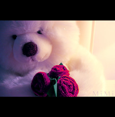 ♥ For You ♥ (M ï M ï) Tags: pink light red white black flower green for you