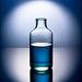 Bluebottle by Bald Monk
