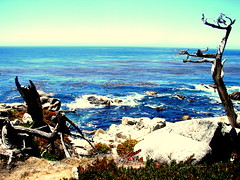 Pacific Coast Highway (suppafreshh21) Tags: ocean california blue summer coast cool warm waves bright edited cartoon pch blah