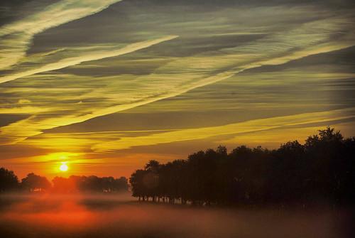 Ochtend mist / Morning Fog