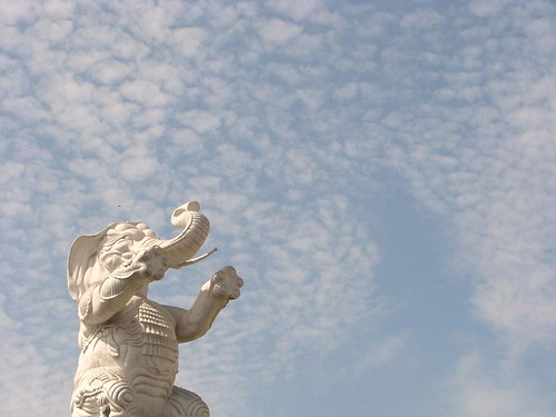 White Elephant by huangjiahui, on Flickr