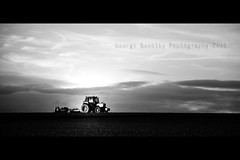 Putting The Seeds Out (geeo123) Tags: light sunset sky food sun white black green grass clouds landscapes cow cows farm wheels seed seeds flare tracker lighing blackwhitephotos aplusphoto flickrlovers