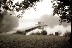Evening Mist 2nd Variation (rfc1437) Tags: mist nature landscape canal pond industrial harbour münster aasee mnster