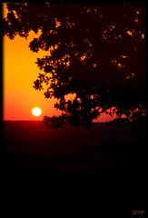 The Sun's Painting (Kuzeytac) Tags: sunset red sky orange sun black color colour tree nature silhouette yellow backlight landscape geotagged evening leaf scenery view scene explore backlit geotag siluet leyla manzara günbatımı güneş sarı lsi ağaç ışık kırmızı portakal renk doğa tabiat siyah canoneos400d canoneosdigitalrebelxti rainbowseries colorphotoaward achallengeforyou kuzeytac copyrightedallrightsreserved aqualityonlyclub