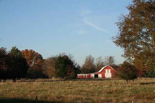 Fall at Legendary Farms