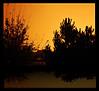 Saturday's sunset (❁bluejay 2006❁) Tags: trees sunset orange canada fall nature yellow scenery vivid saturday beautifulbritishcolumbia golddragon nikond40 theperfectphotographer bluejay2006 passionateinspirations flickrsmasterpieces