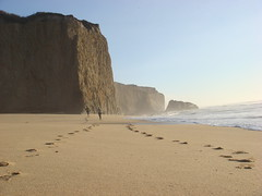 MartinsBeach_2007-105 (Martins Beach, California, United States) Photo