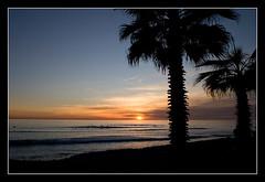 San O' Palms (Miserlou) Tags: california sunset seascape color water silhouette clouds palms surf waves palmtrees orangecounty sanonofre sano wwwocphotographicscom