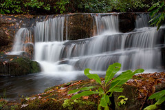 Lower Crow Creek Falls (Shane_A) Tags: longexposure water creek xsi crowcreek supershot 450d canon28135mmisusm anawesomeshot overtheexcellence lowercrowcreekfalls