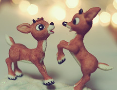 (ginnerobot) Tags: christmas blue decorations cute reindeer toys lights eyes december bokeh cartoon prancing project365 kindofoutoffocus wellactuallyiguessthisisnovember ohlordyimstartingtotakechristmasypicturesalready reallybigeyes