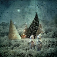 Dreaming of a white Christmas (Martine Roch) Tags: bear santa christmas xmas nature natal night weihnachten children square happy navidad dream surreal noel fairy photomontage nol magical natale kitch digitalcollage petitechose martineroch