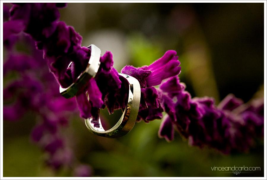wedding ring palisades park santa monicaring