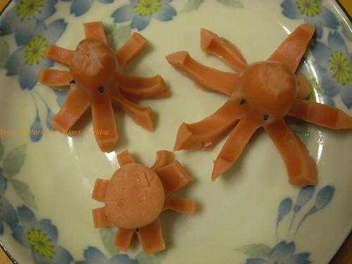 你拍攝的 6大小章魚。