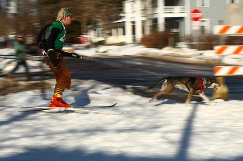 Skijoring Loppet 8800
