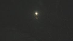 35.枯枝與明月