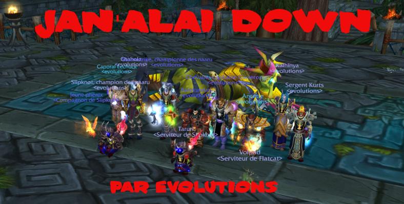 janalai_down_12042008_788