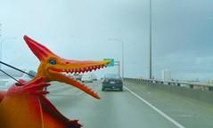 prehistoric road rage