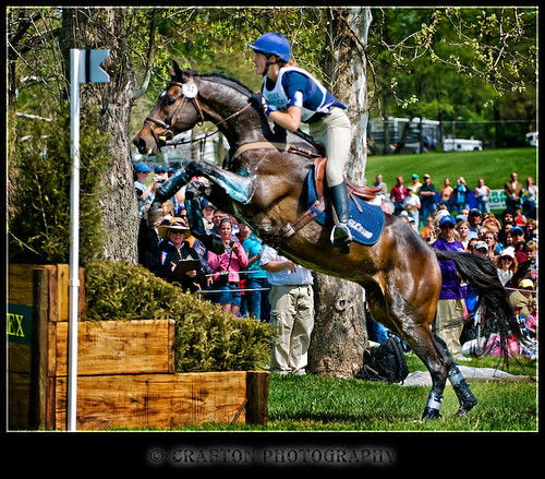 Horses jumping cross country - photo#6