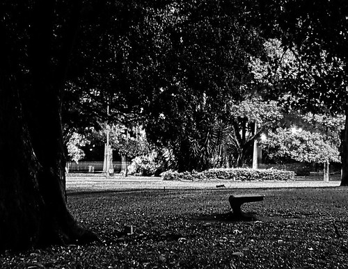 My soul was Black&White - One cold day in the end of Saturday, in the Park of the Ibirapuera, in Săo Paulo, just to take off photos